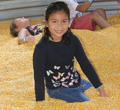 little girl plays in corn pit